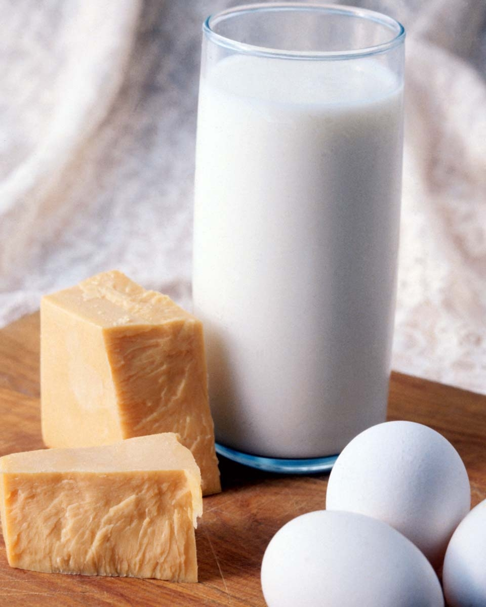 daily services of dairy products